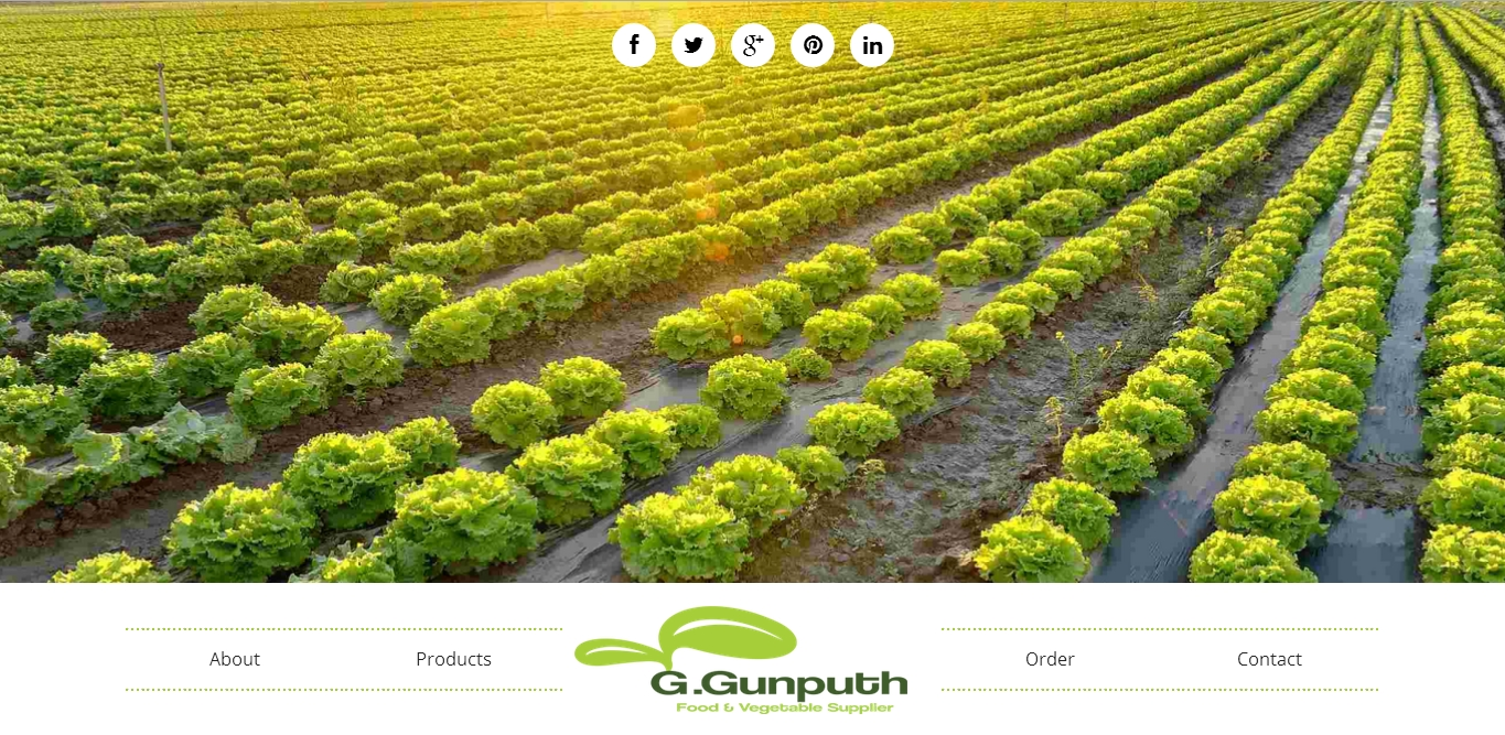 G Gunputh Vegetable Supplier